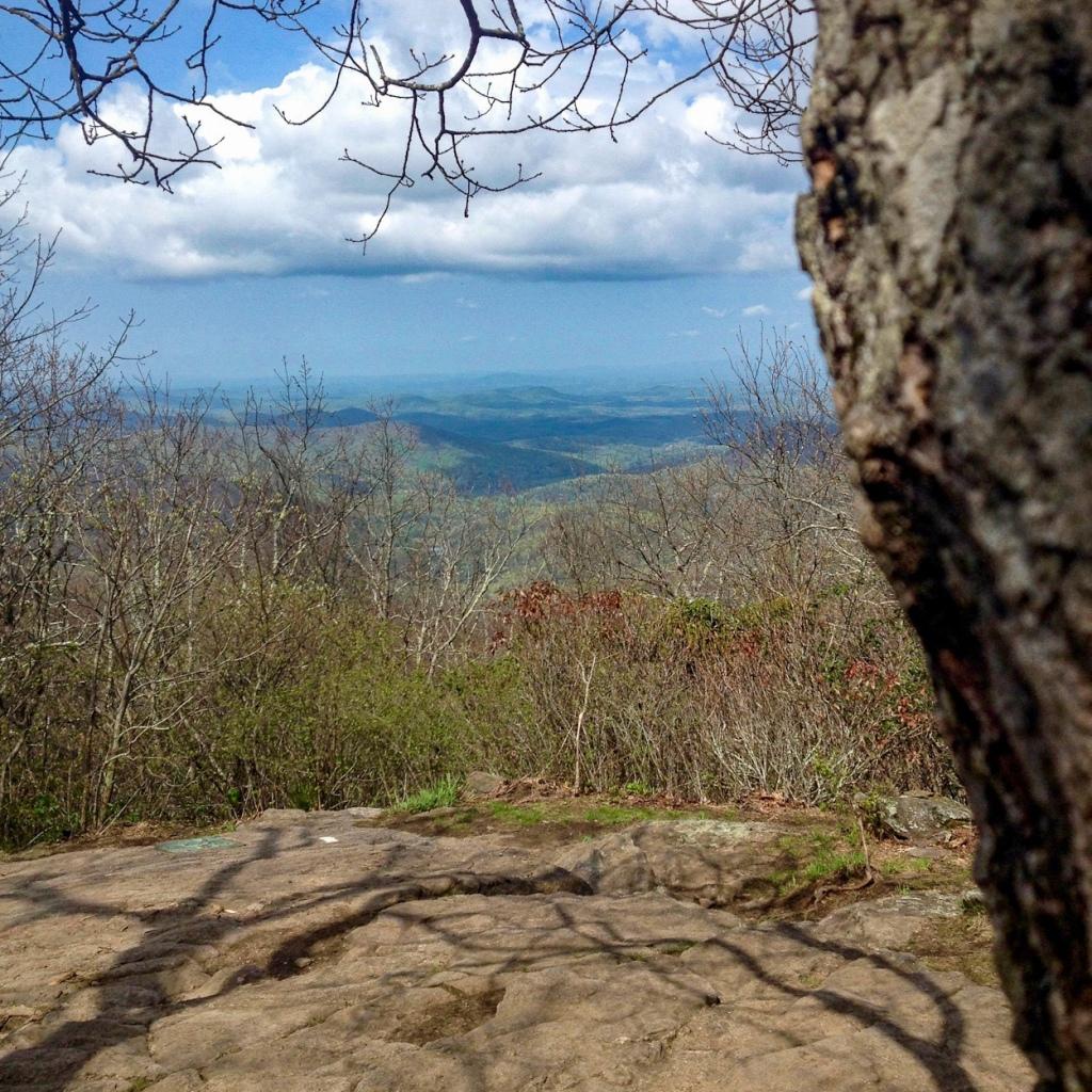 Springer Mountain, Appalachian Trail Southern Terminus