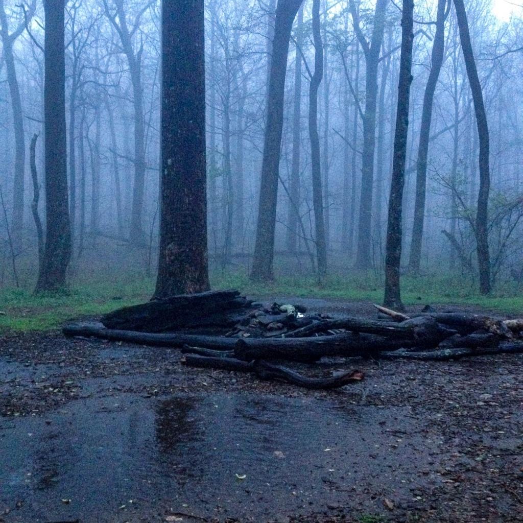 Rainy morning at Bull Gap, Georgia
